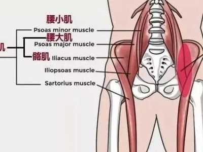 孕婦腰酸怎么緩解 為什么懷孕久坐會腰痛